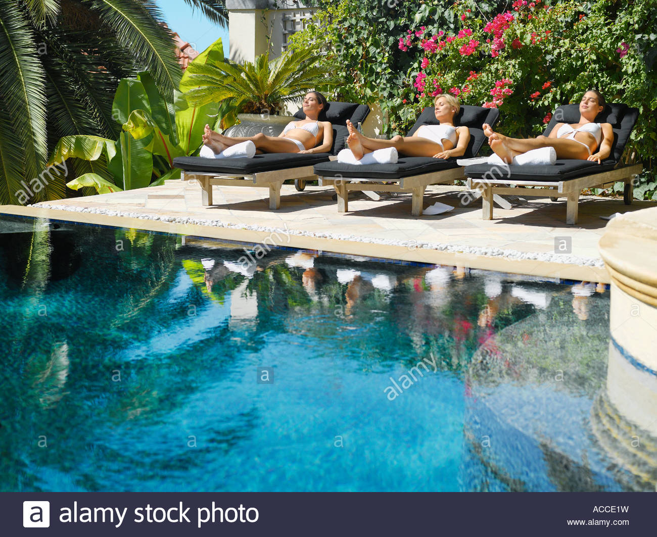 Three Women Sun Tanning In Lounge Chairs By A Pool   Stock Image