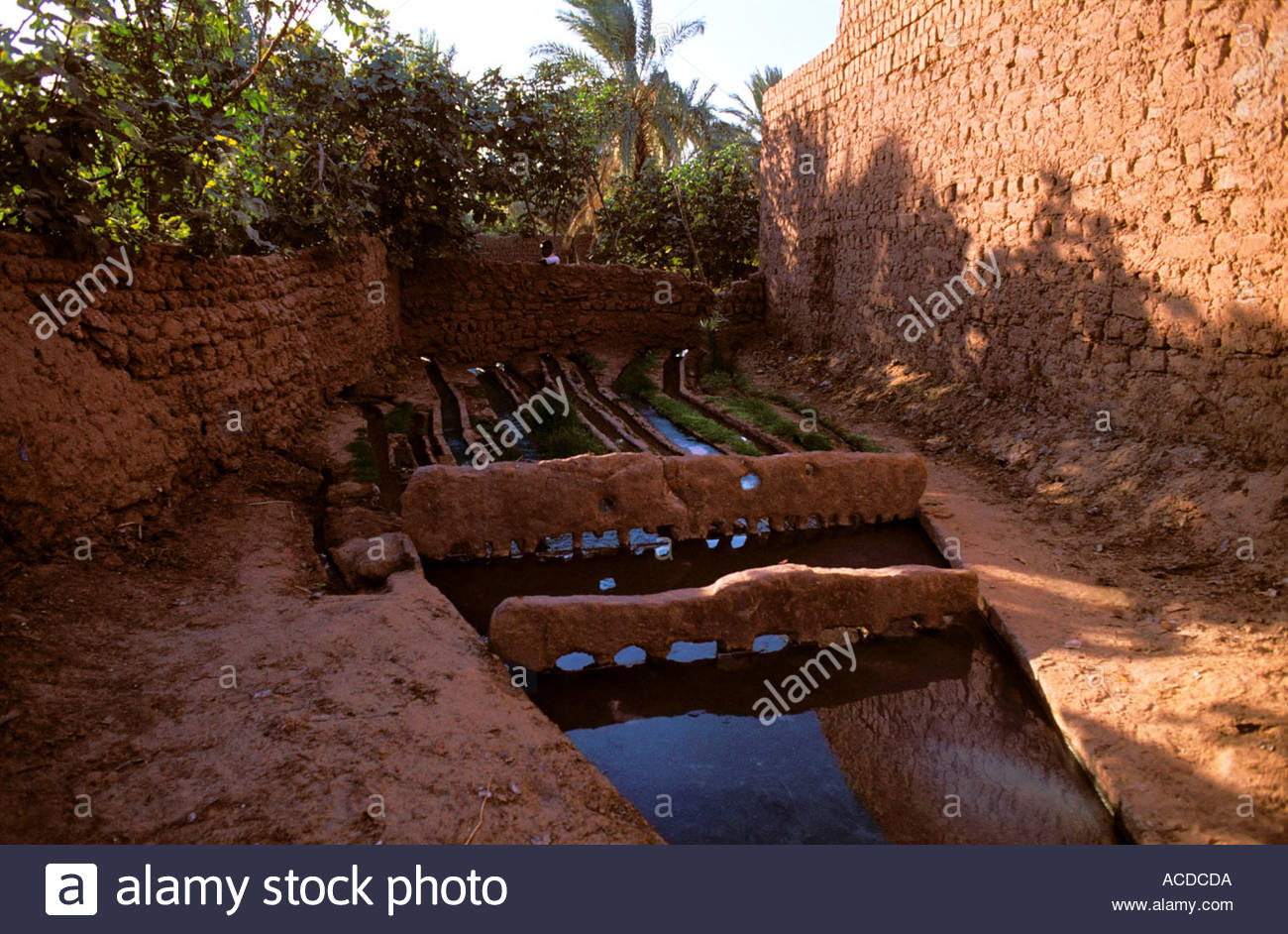 oasis irrigation canal water comb distribution garden agriculture ...