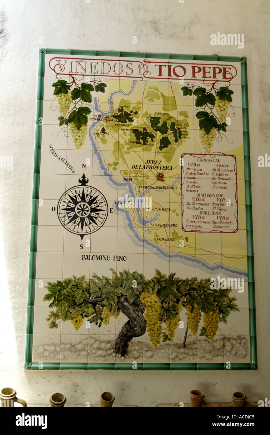 Map Of Spain Vineyards.Tiled Map Of Vineyards Jerez De La Frontera Provincia De Cadiz Spain