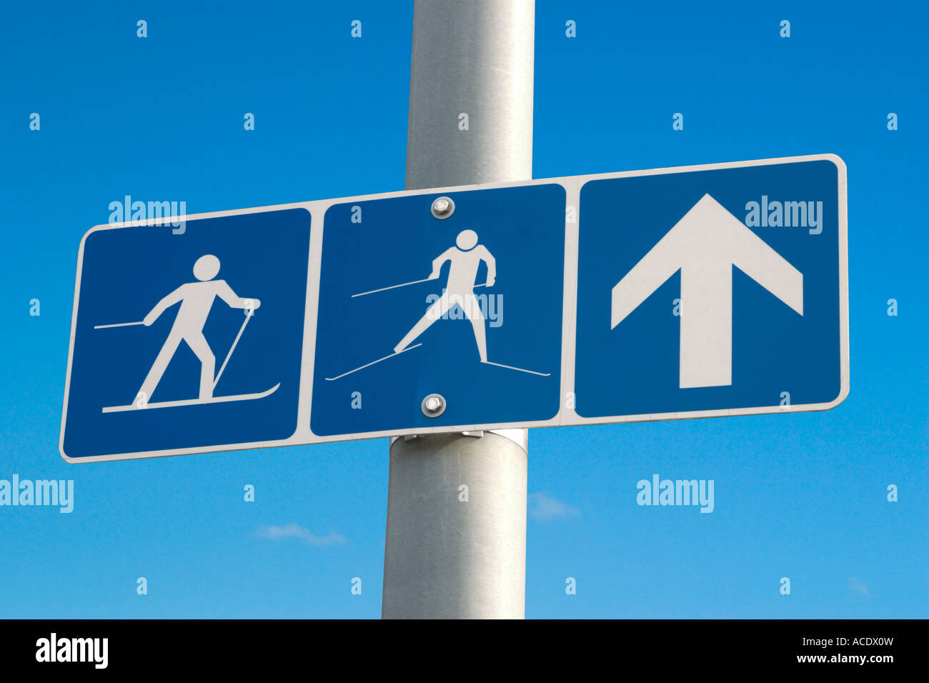 Cross-country and downhill skiing ahead winter activities sign - Stock Image