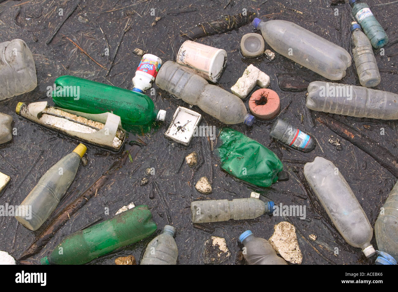 rubbish floating on a polluted river Duoro, Porto, portugal - Stock Image