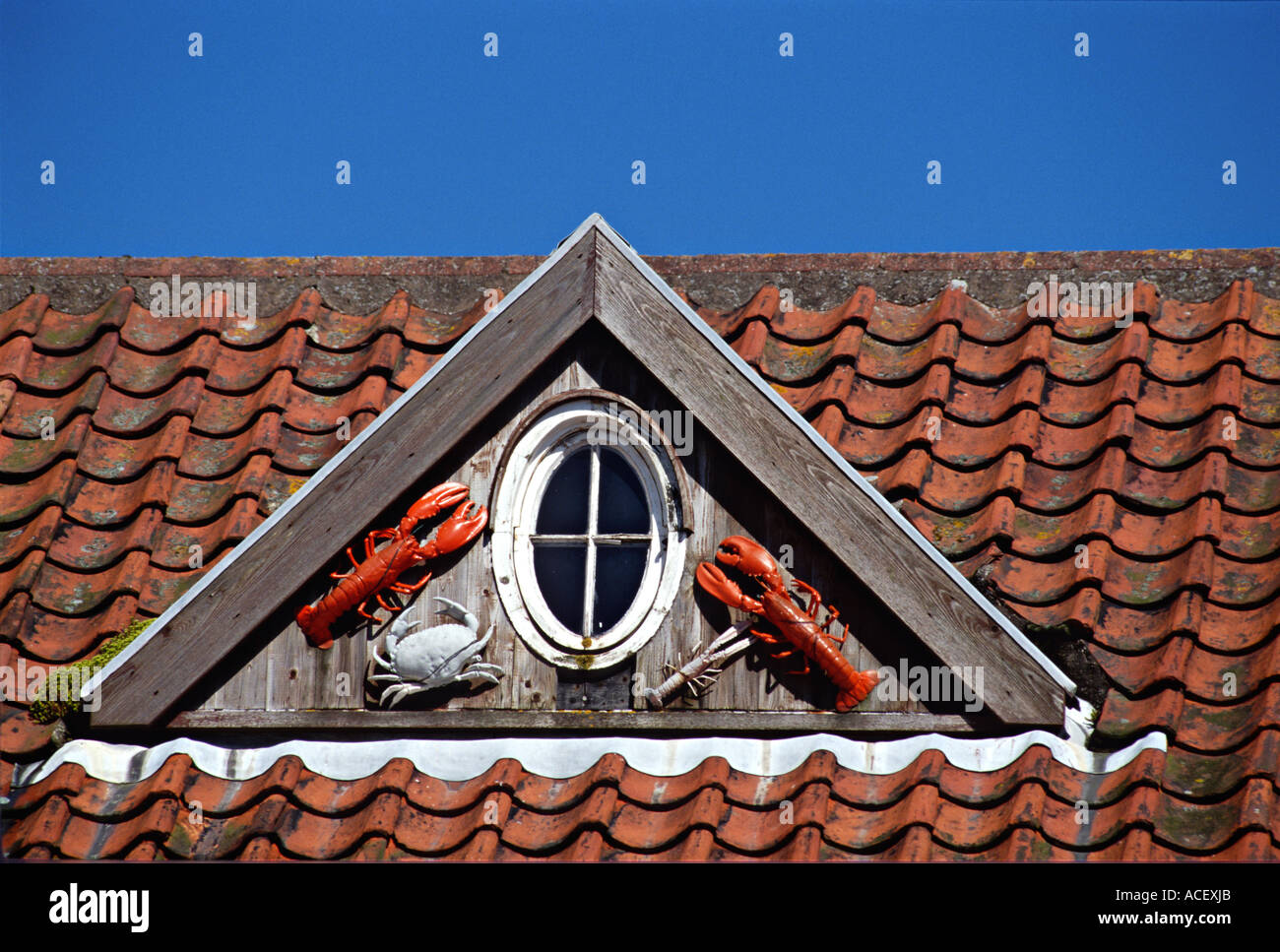SCOTLAND Crail Lobster and crabs hung outside oval dormer window triangular dormer on red tiled roof architectural detail - Stock Image