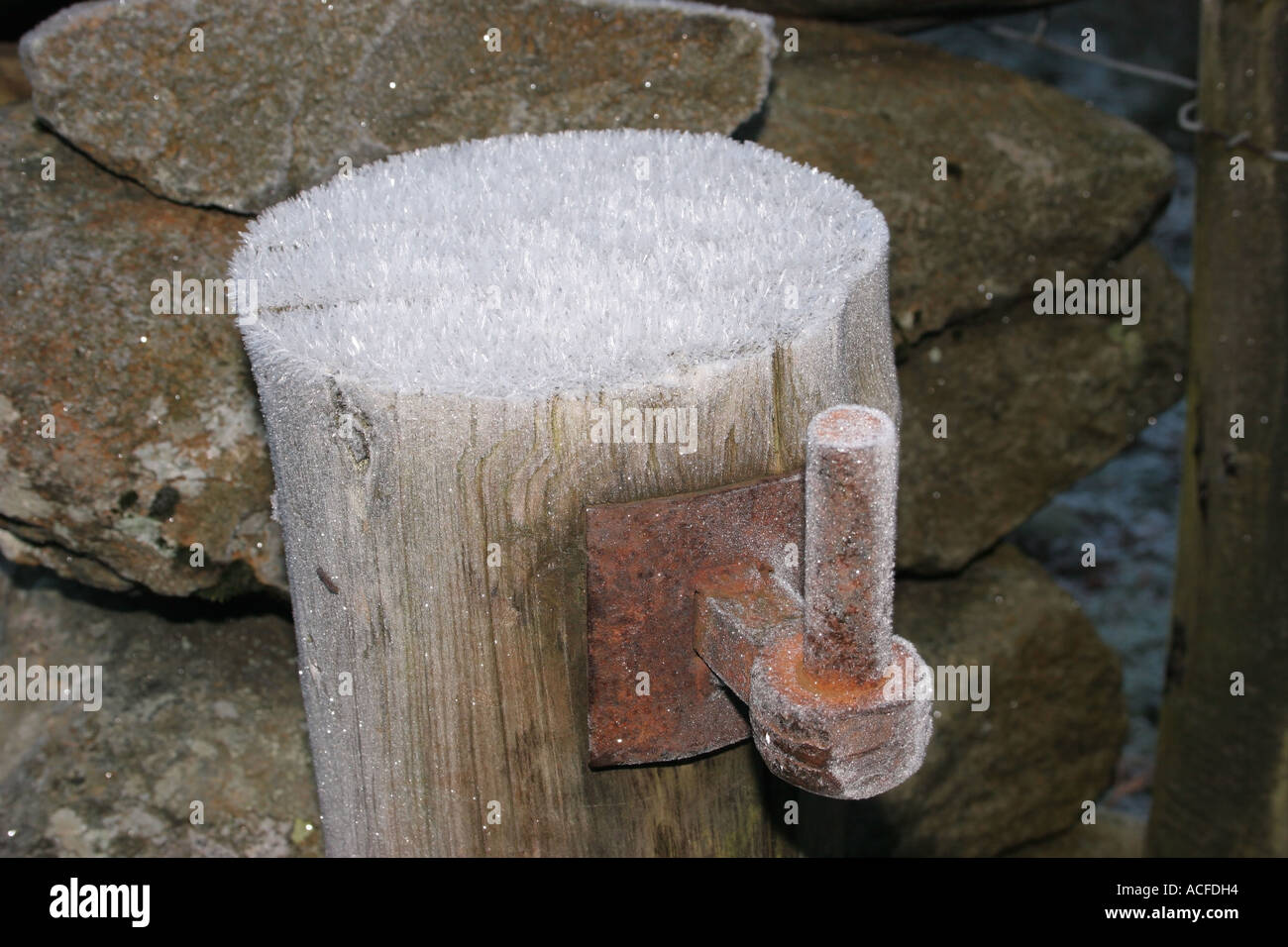 Frost Crystals on a Gatepost and Hinge - Stock Image
