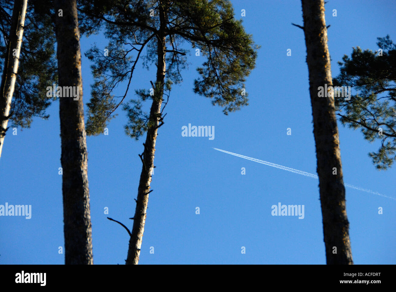 contrails on blue sky - Stock Image