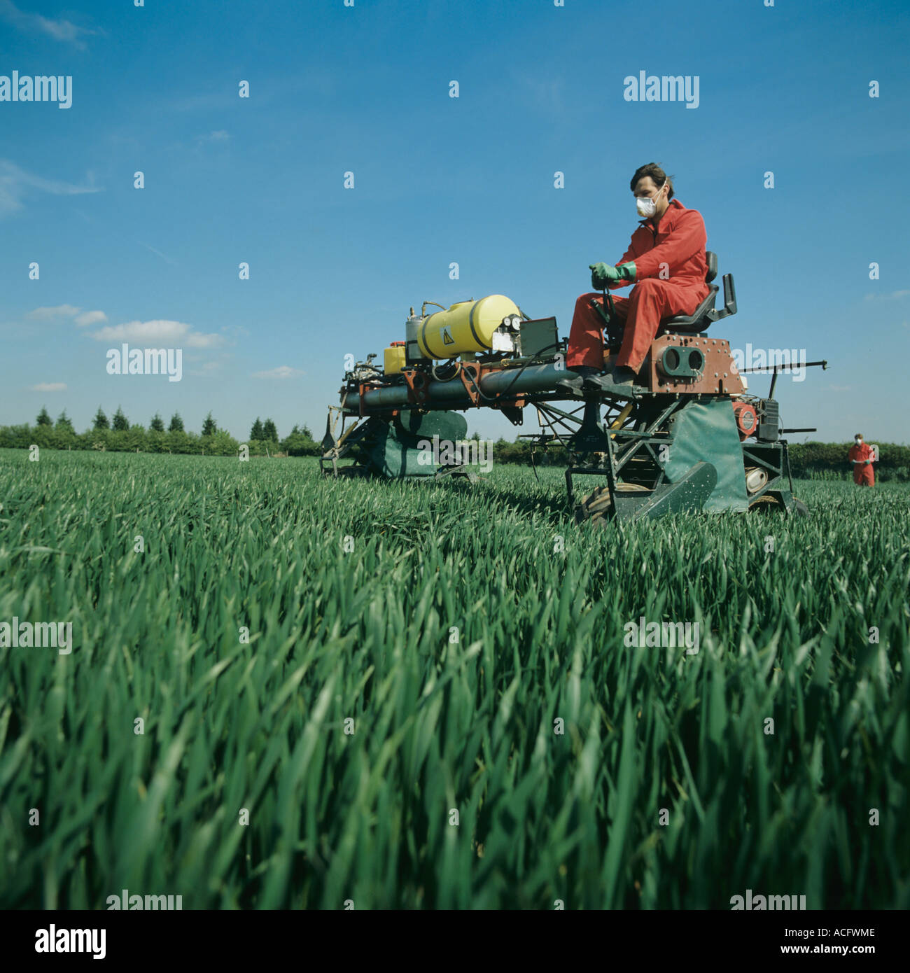 Self propelled specially designed plot sprayer spraying wheat experiment - Stock Image