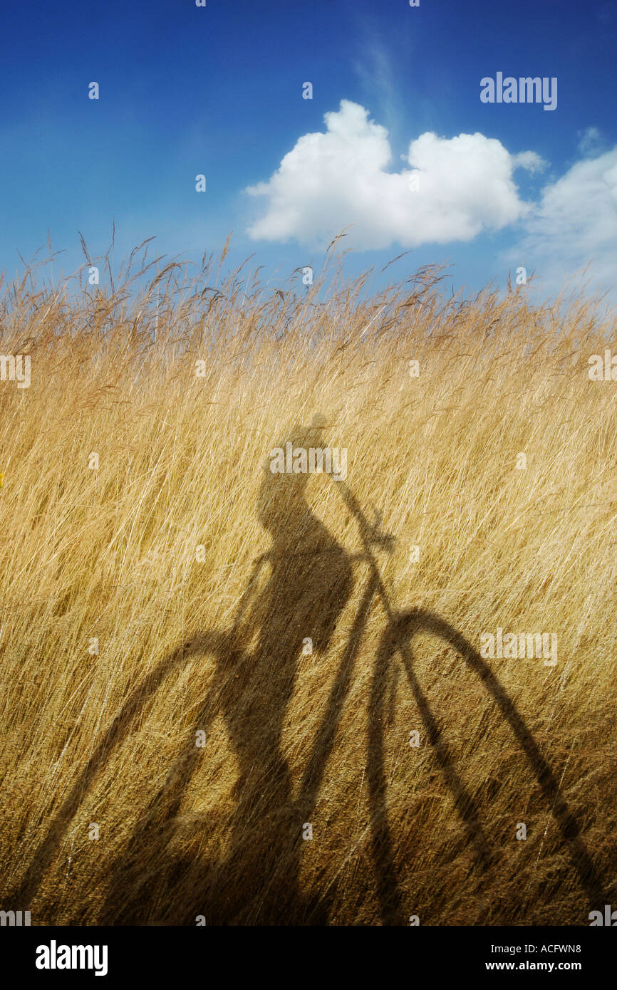 Photo of the shadow of somebody riding a bicycle - Stock Image