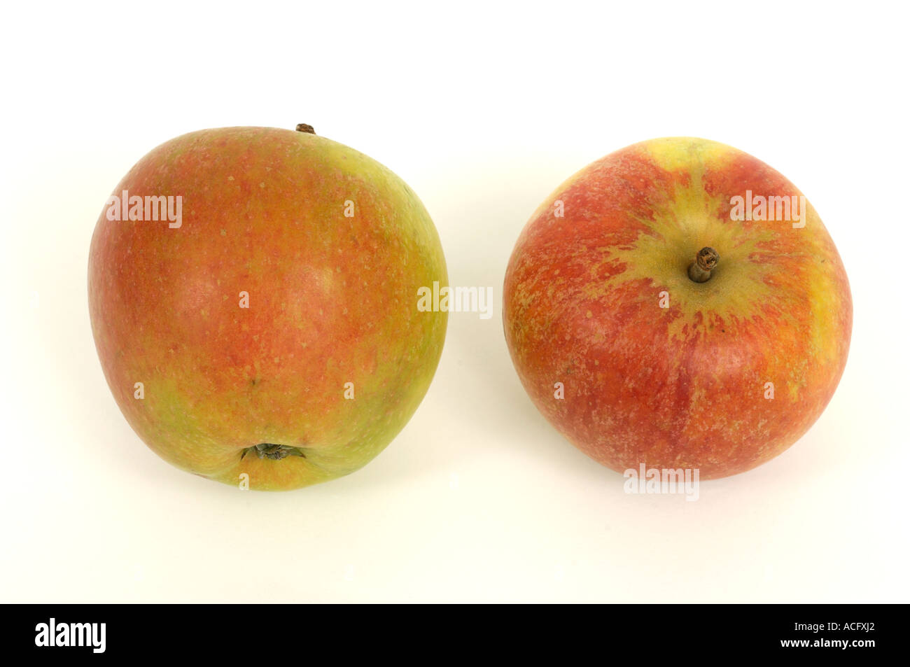 Fruit produce typical supermarket bought eating apples variety Cox - Stock Image