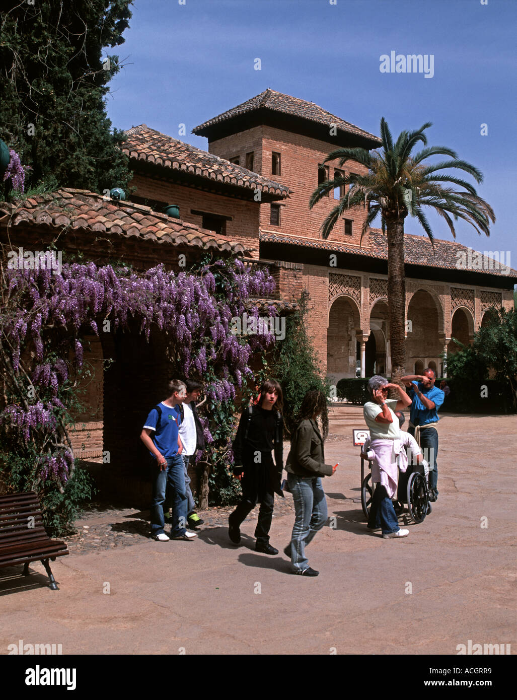 83699ee263b Wisteria and the Tower of the Ladies at the Alhambra Stock Photo ...