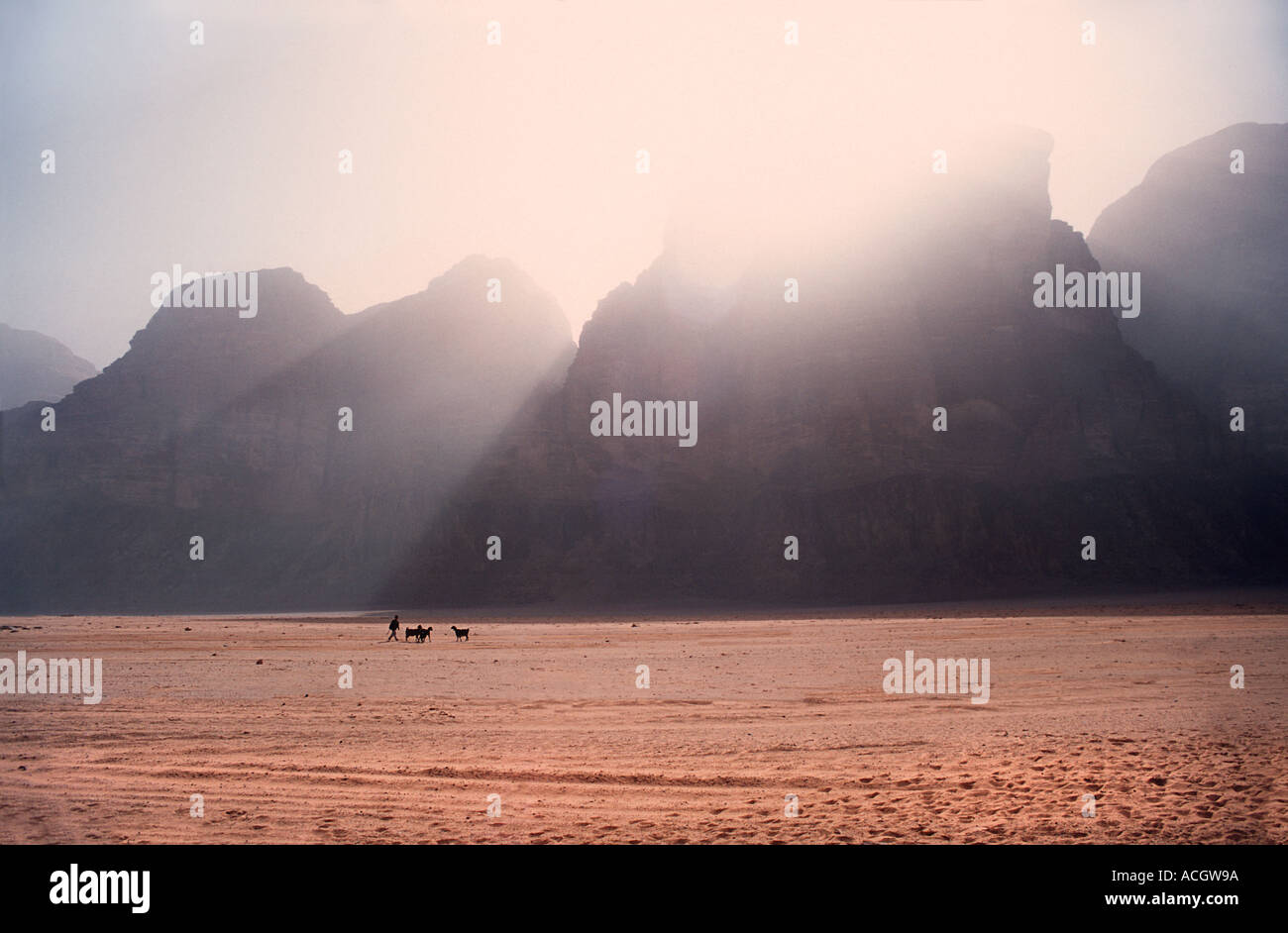 Red sand floor of the desert with rocky Jebels in the distance A boy herding goats in the foreground Wadi Rum Jordan - Stock Image