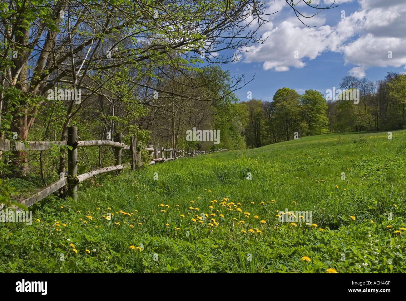 Danish summer landscape Frederiksdal Zealand Denmark - Stock Image