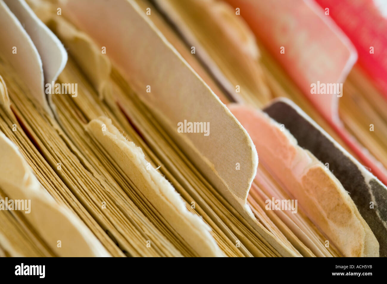 closeup of files, dividers and tabs in office cabinet - Stock Image