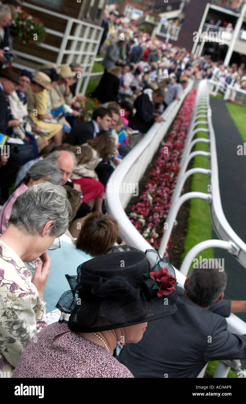 Punters at York Racecourses (2) - Stock Image