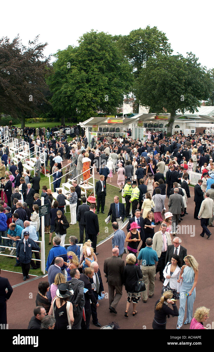 Punters at York Racecourses (3) - Stock Image
