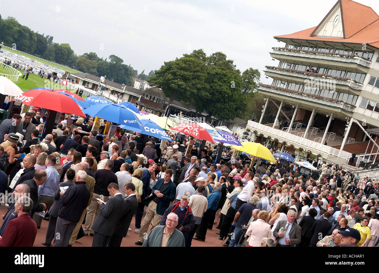 Punters at York Racecourses (4) - Stock Image