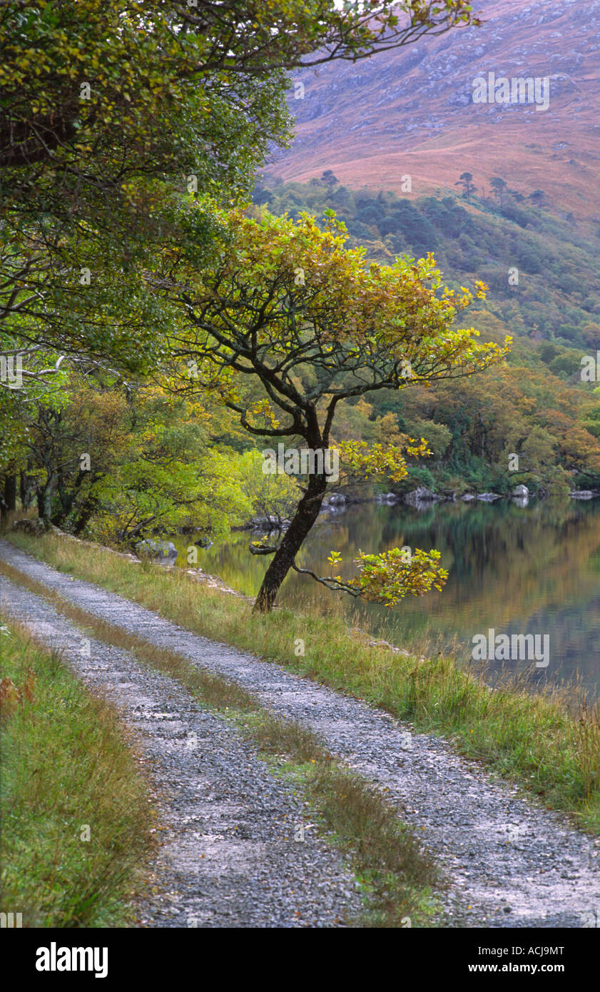 Track beside Lough Veagh in Glenveagh National Park, County Donegal, Ireland. - Stock Image