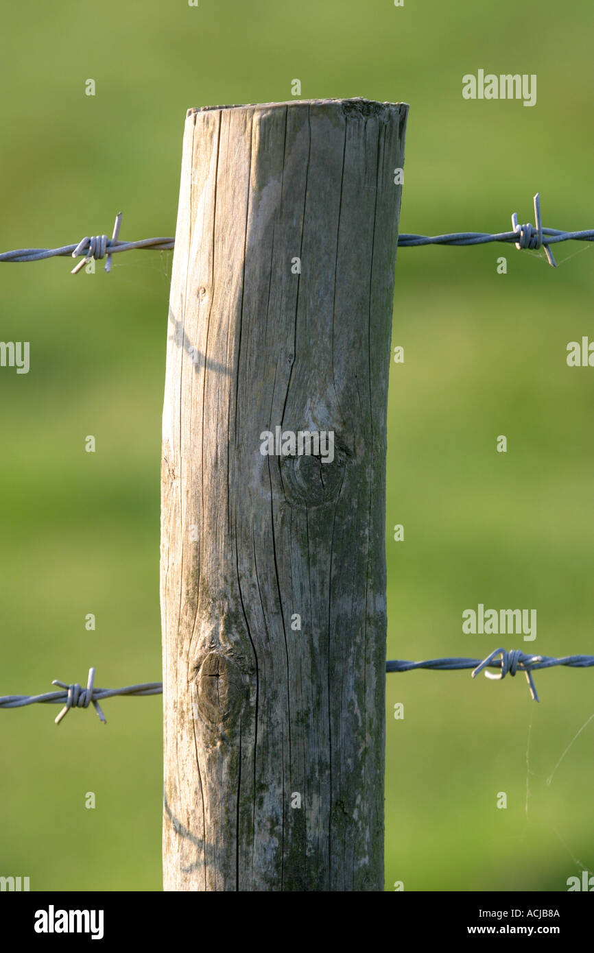 Fence post close up with barbed wire and chicken wire Stock Photo ...