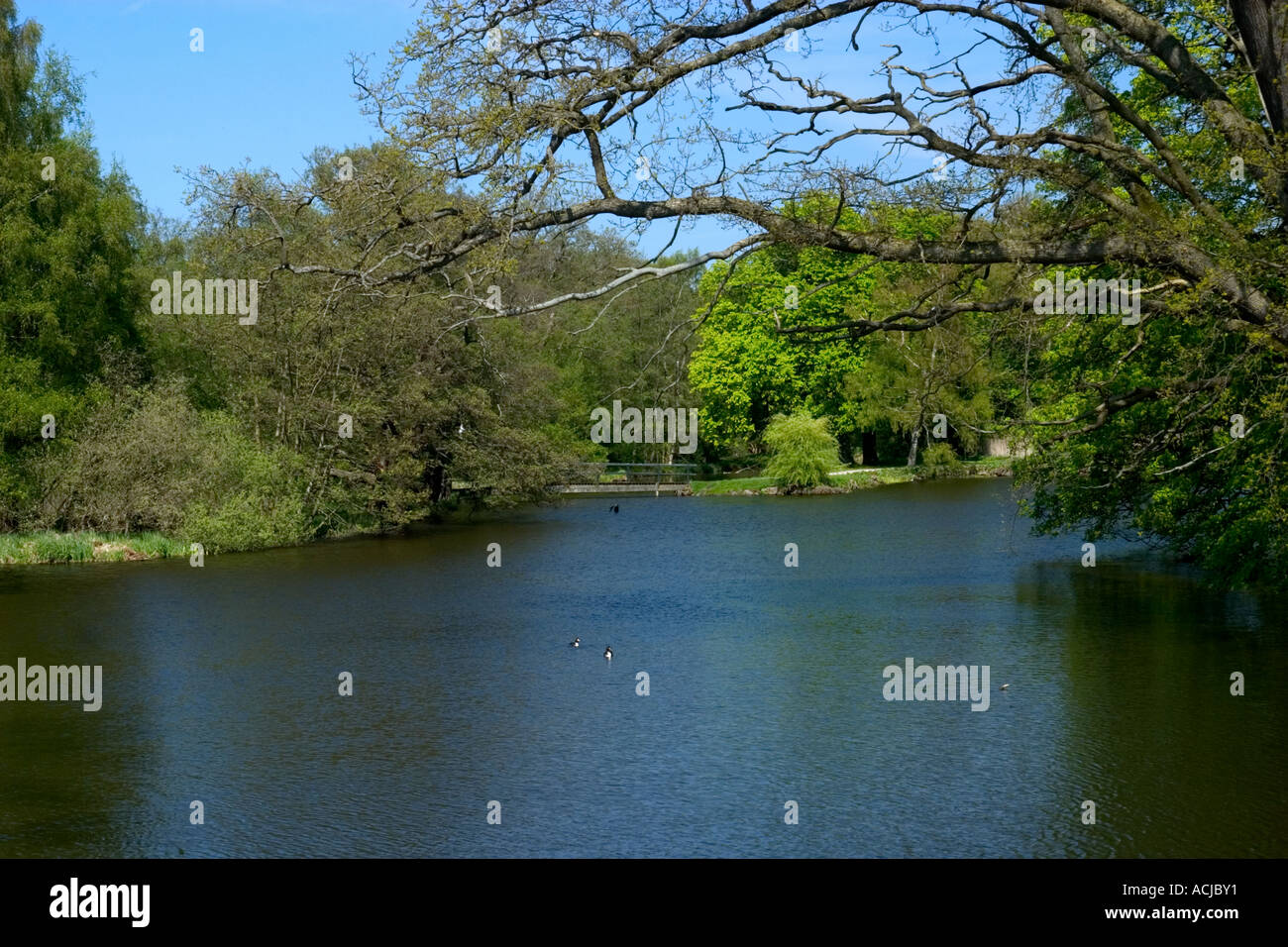 Lake at Fredriksborg Slot Hilleroed Zealand Denmark - Stock Image
