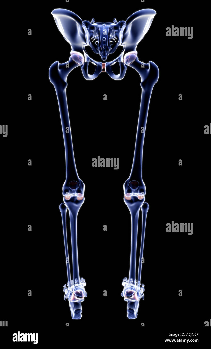 X Ray Lower Back Stock Photos X Ray Lower Back Stock Images Page