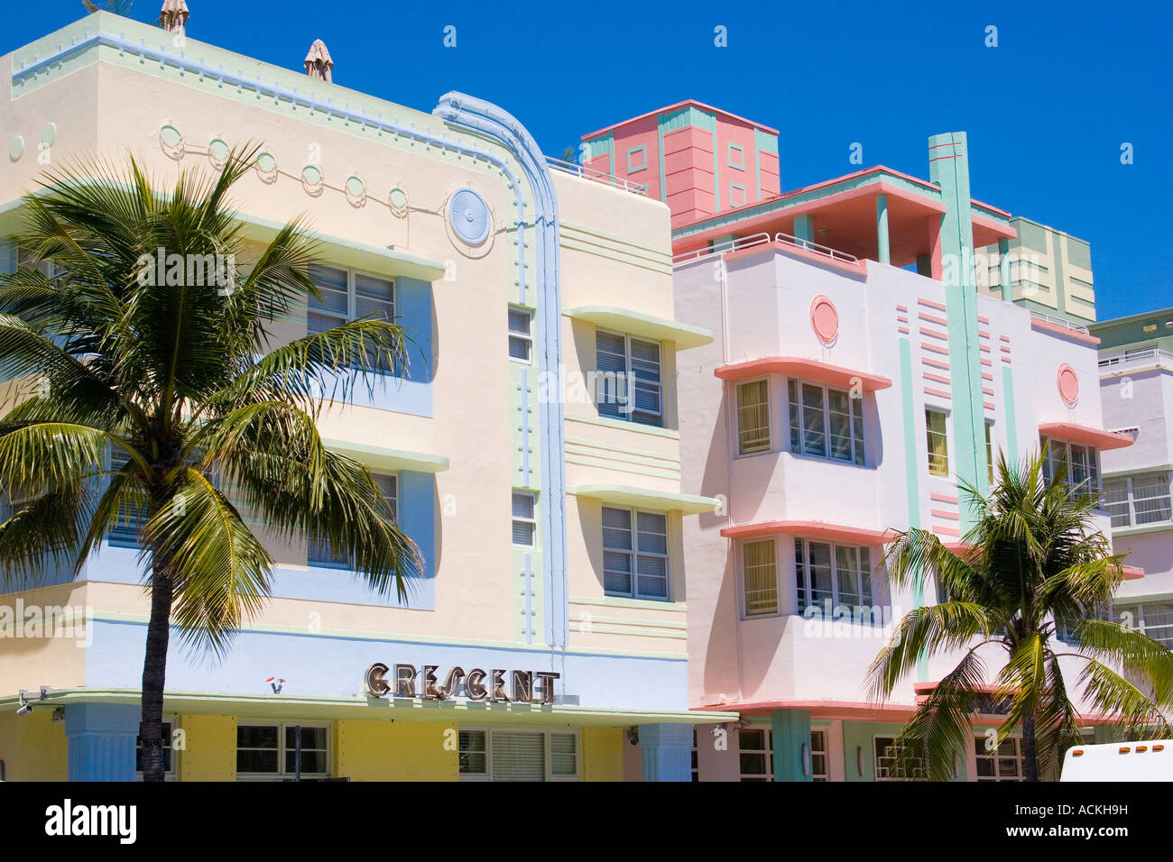 palm trees colourful buildings miami stock photos palm trees