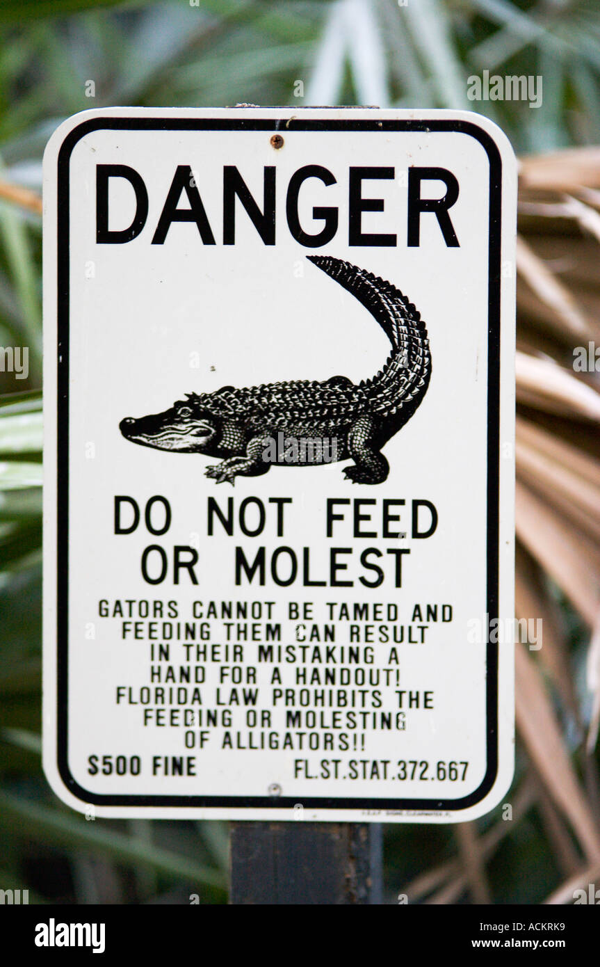 Sign warns do not feed or molest alligators at Lowry Park Zoo in Tampa, Florida, USA Stock Photo
