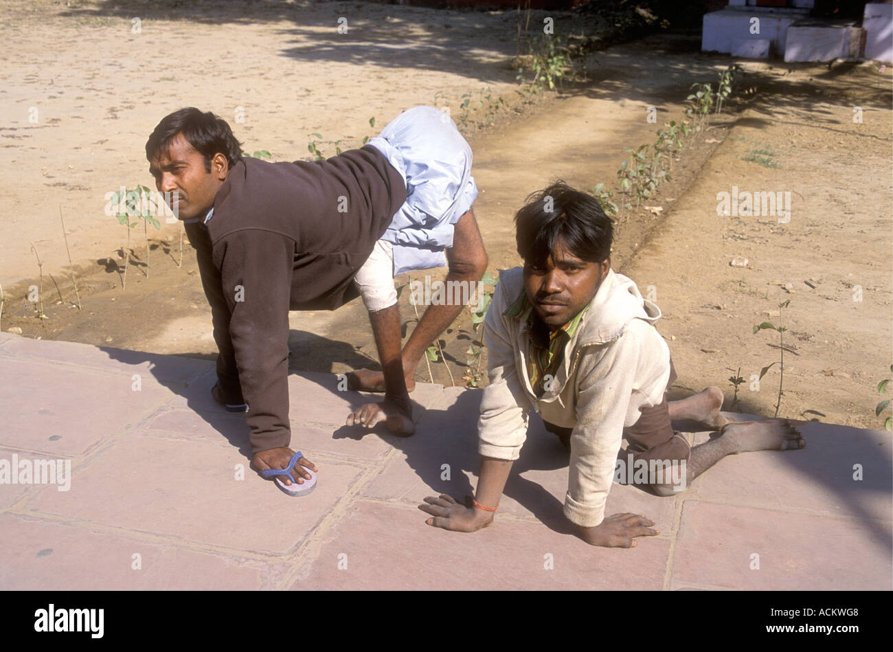 https://c8.alamy.com/comp/ACKWG8/two-young-men-who-have-been-crippled-by-polio-agra-uttar-pradesh-india-ACKWG8.jpg