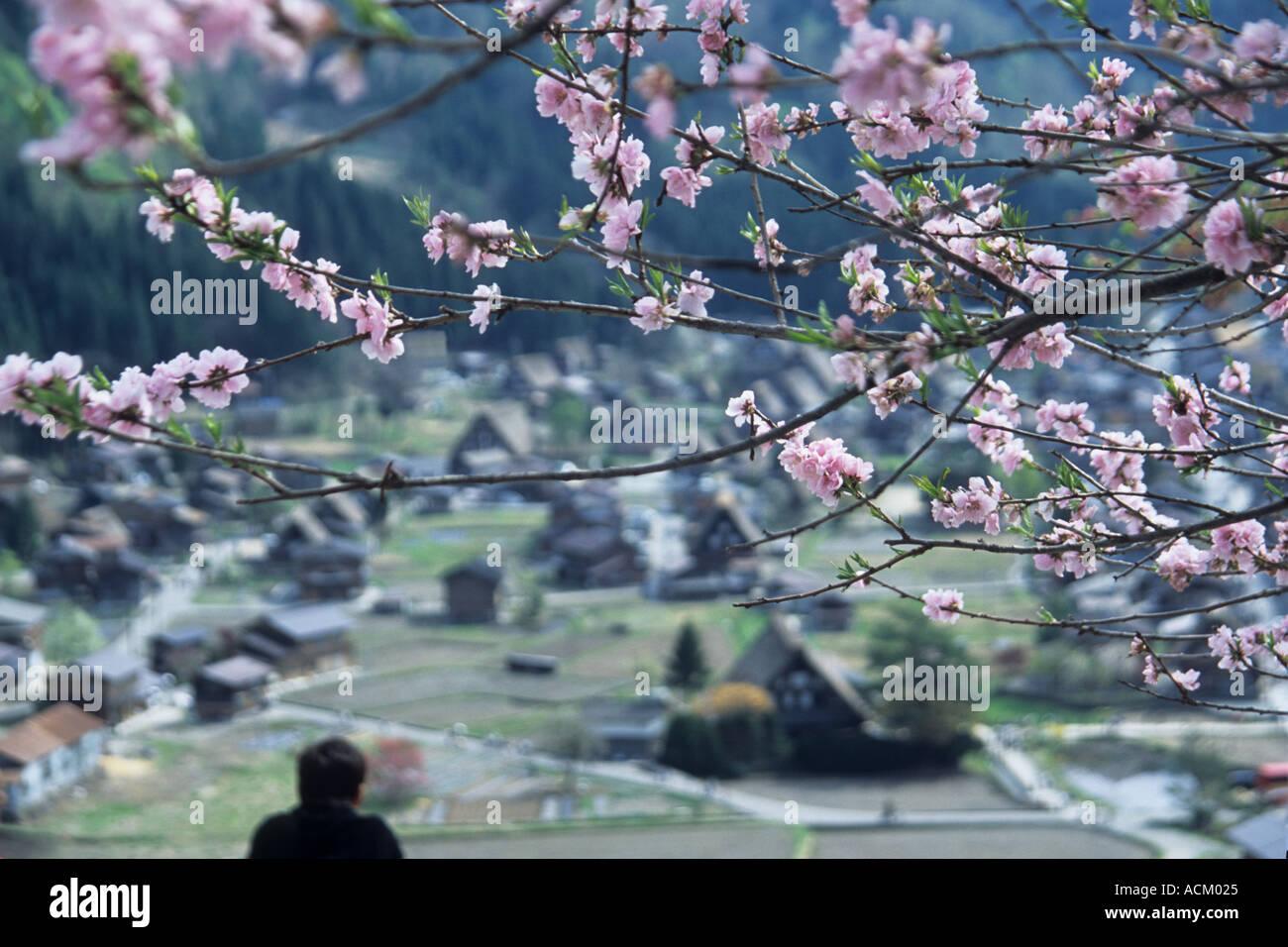 Shirakawa go village, Japan - Stock Image