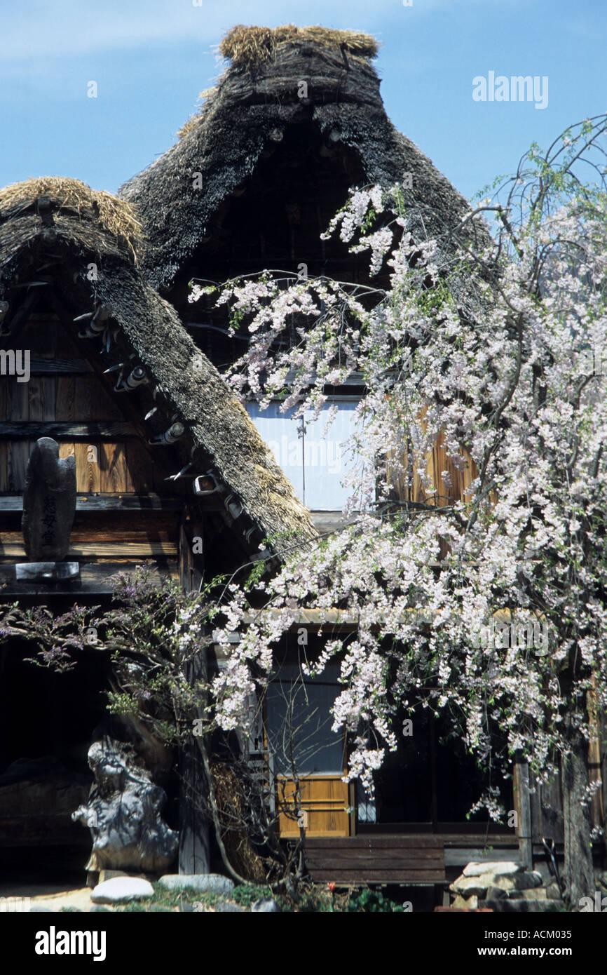 Shirakawa go village Japan - Stock Image