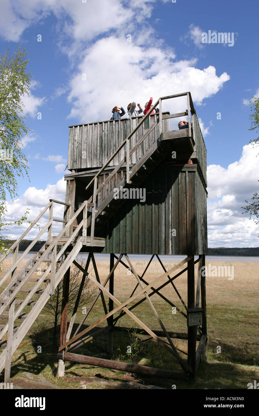People in a bird watchers tower in Sweden - Stock Image