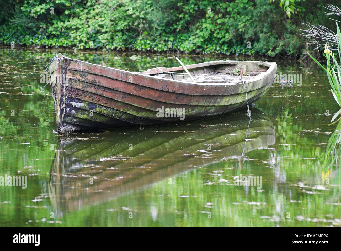Rowing boat in a pond at Bunratty Folk Park Co Clare Ireland - Stock Image