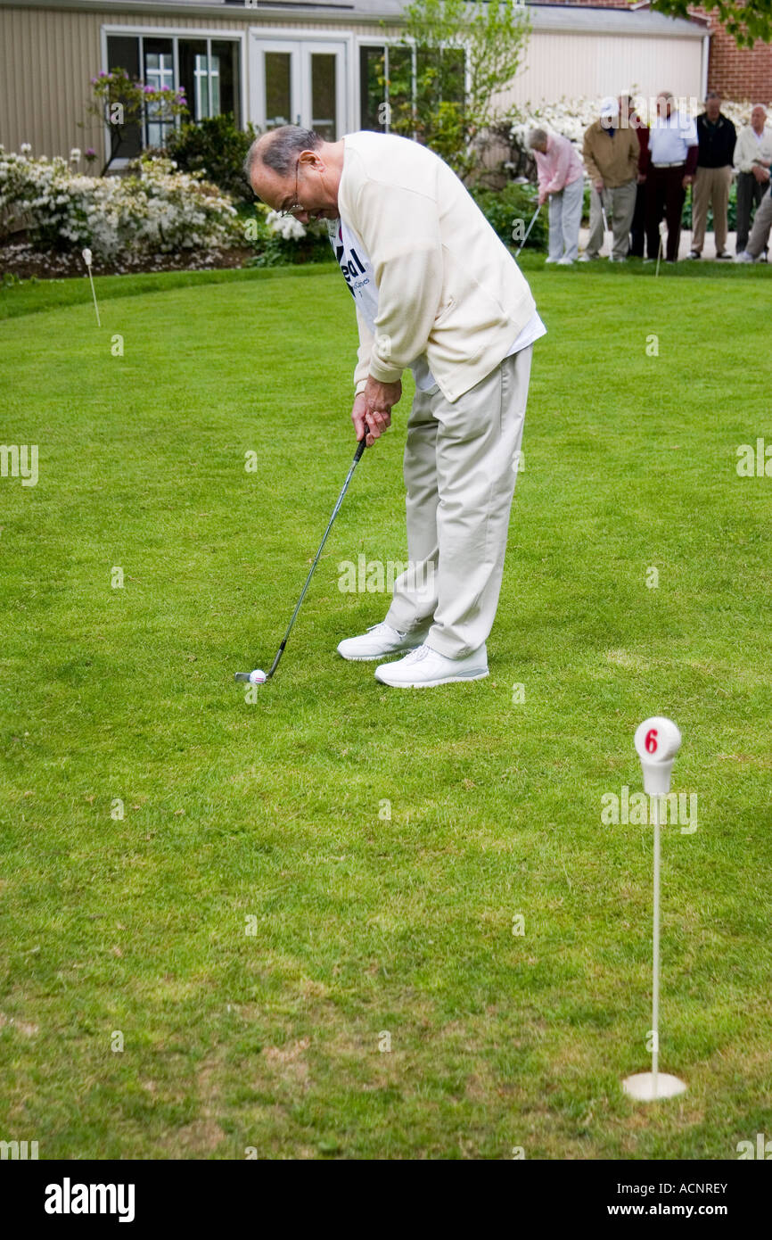 Elderly retired man in his 80s bending over to putt a golf ball into the hole as other golfers look on - Stock Image