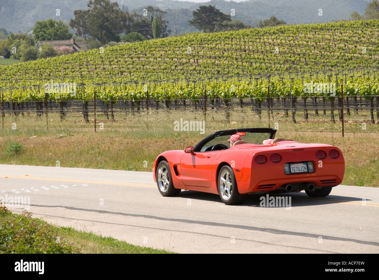 Car touring in Edna Valley wine country near San Luis Obispo, California - Stock Image