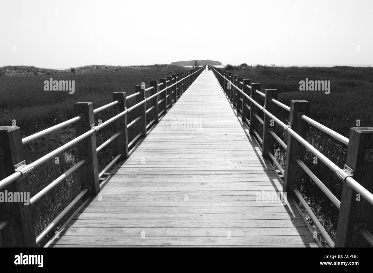 Long Boardwalk heading out to sea pathway to nowhere - Stock Image