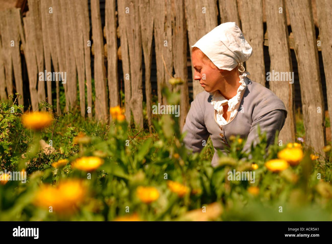 Woman Tending Garden Plimouth Plantation Stock Photos & Woman ...