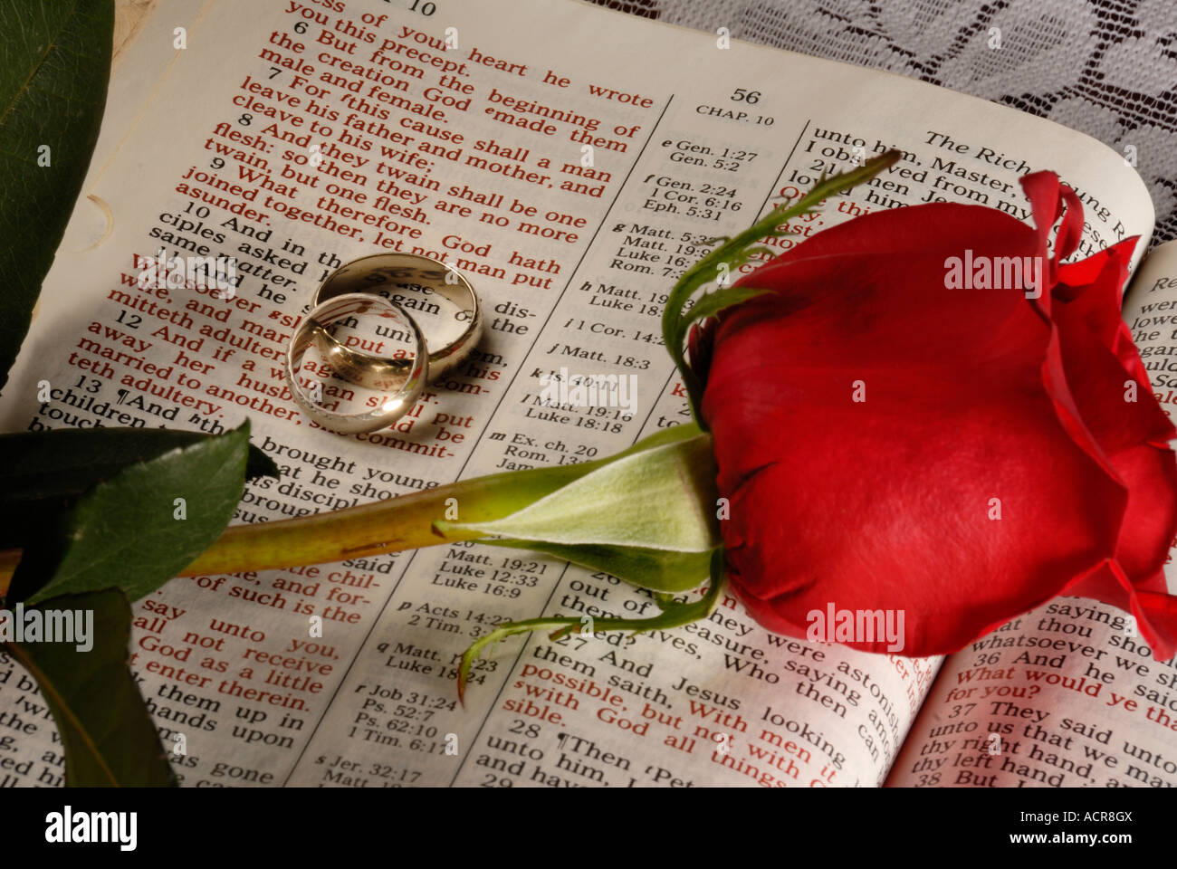 flowers stock bible of band rings and chapters image wedding scripture