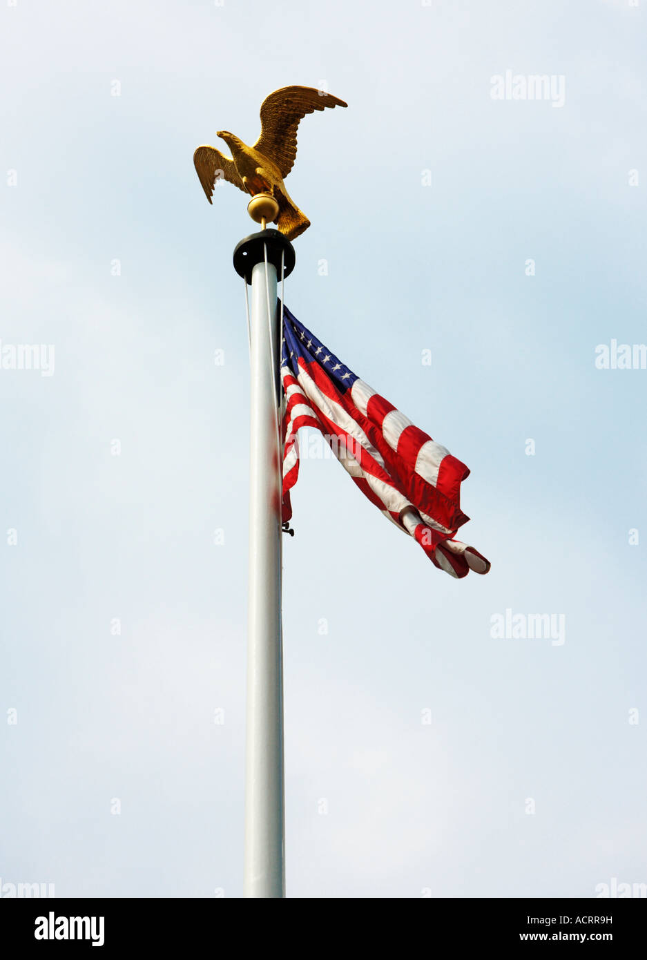 US flag and golden eagle sculpture on a flagpole - Stock Image