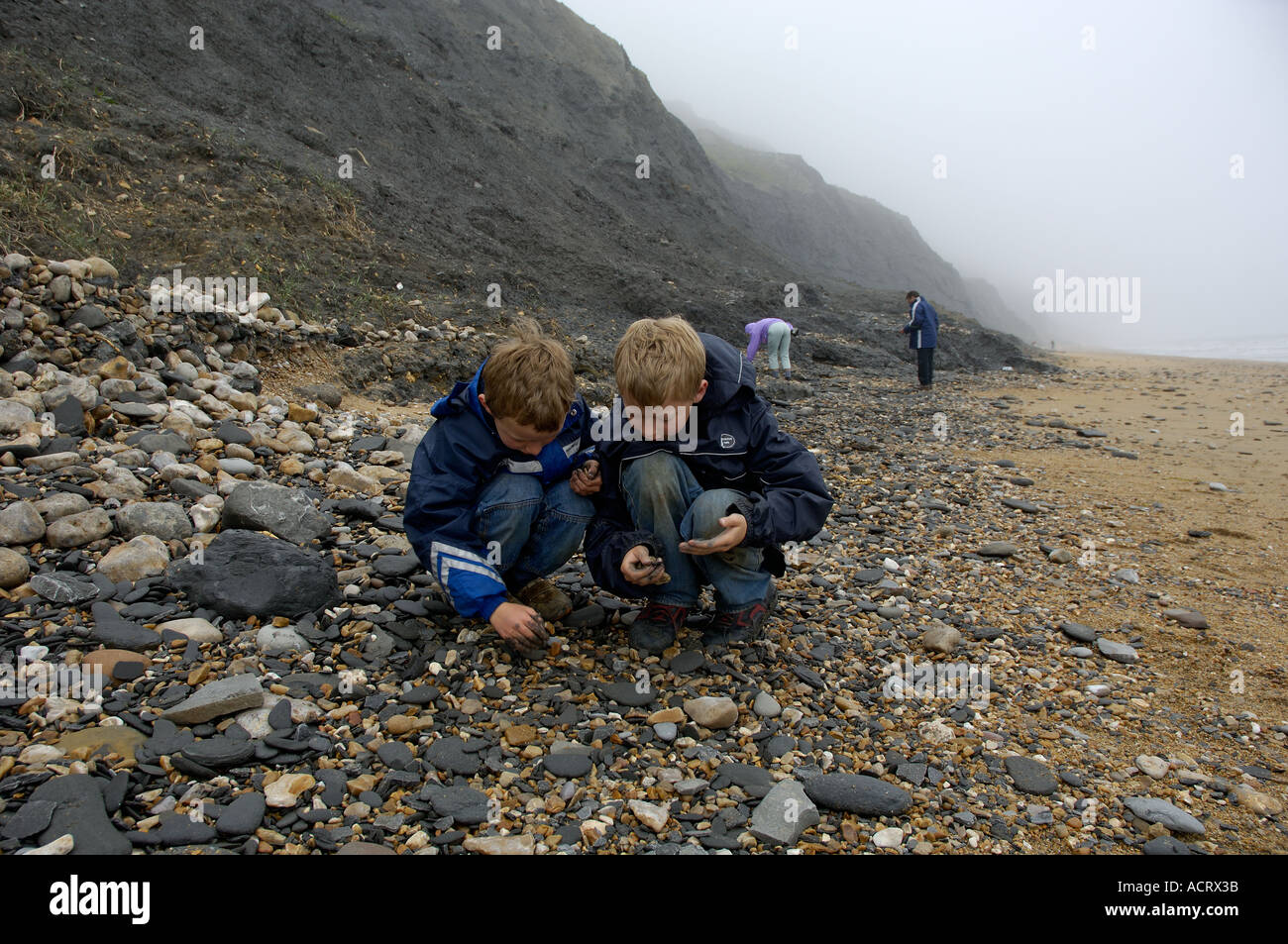 Children collecting fossiles Jurassic Coast Charmouth near Lyme Regis Dorset East Devon Coast England Stock Photo