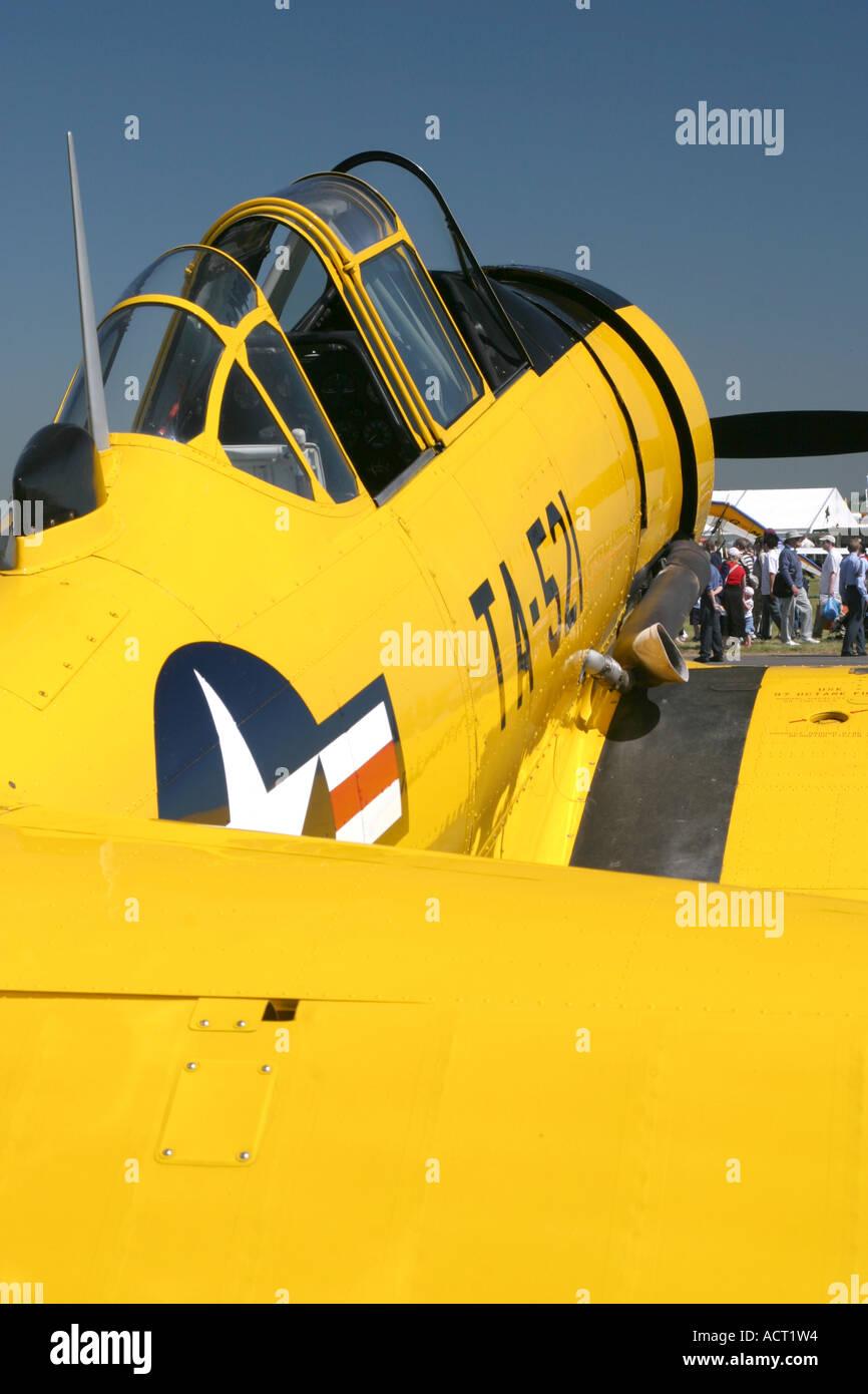 Biggin Hill International Air Fair 2006 - Stock Image