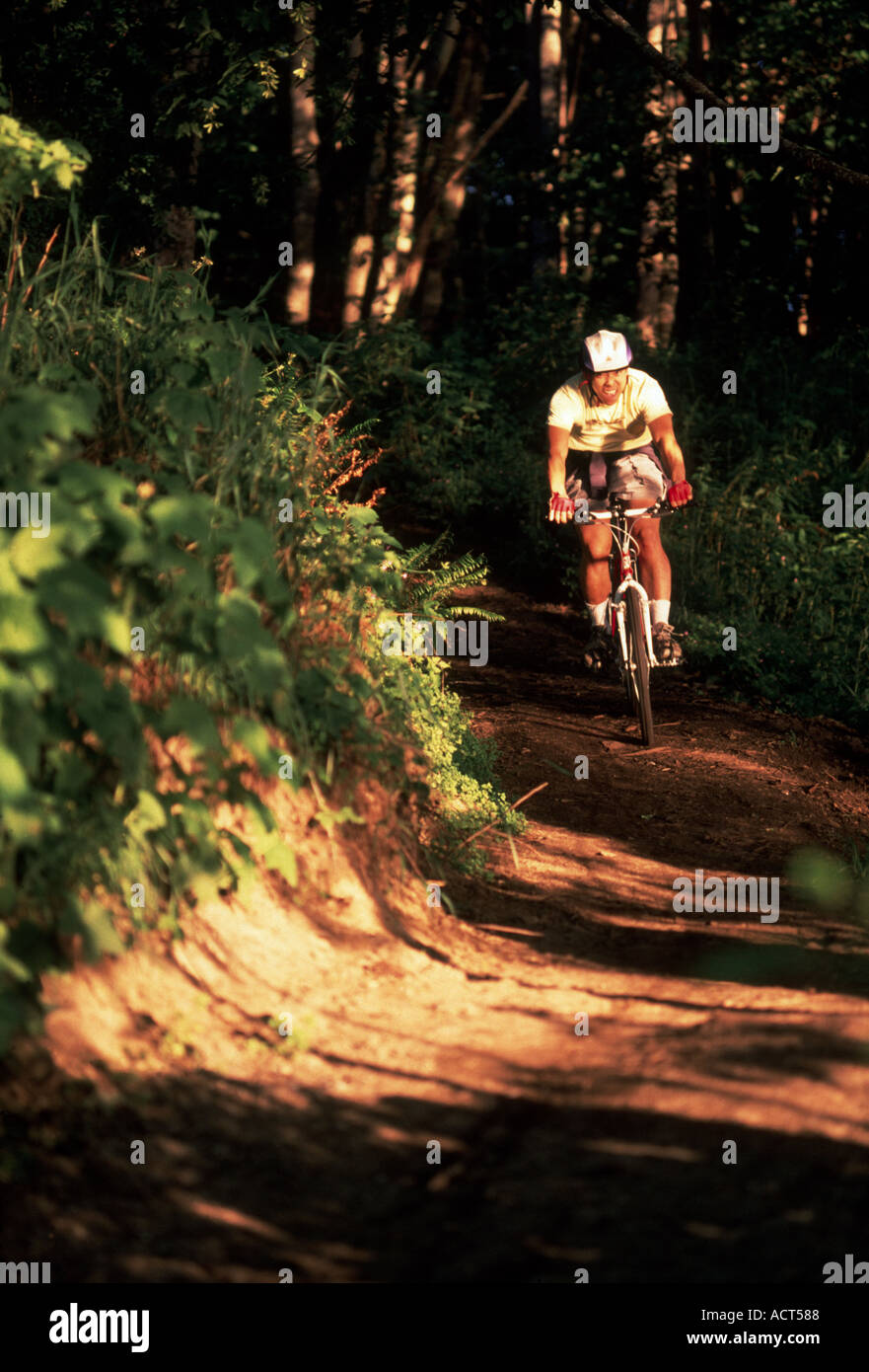 Mountain biker racing on trail - Stock Image