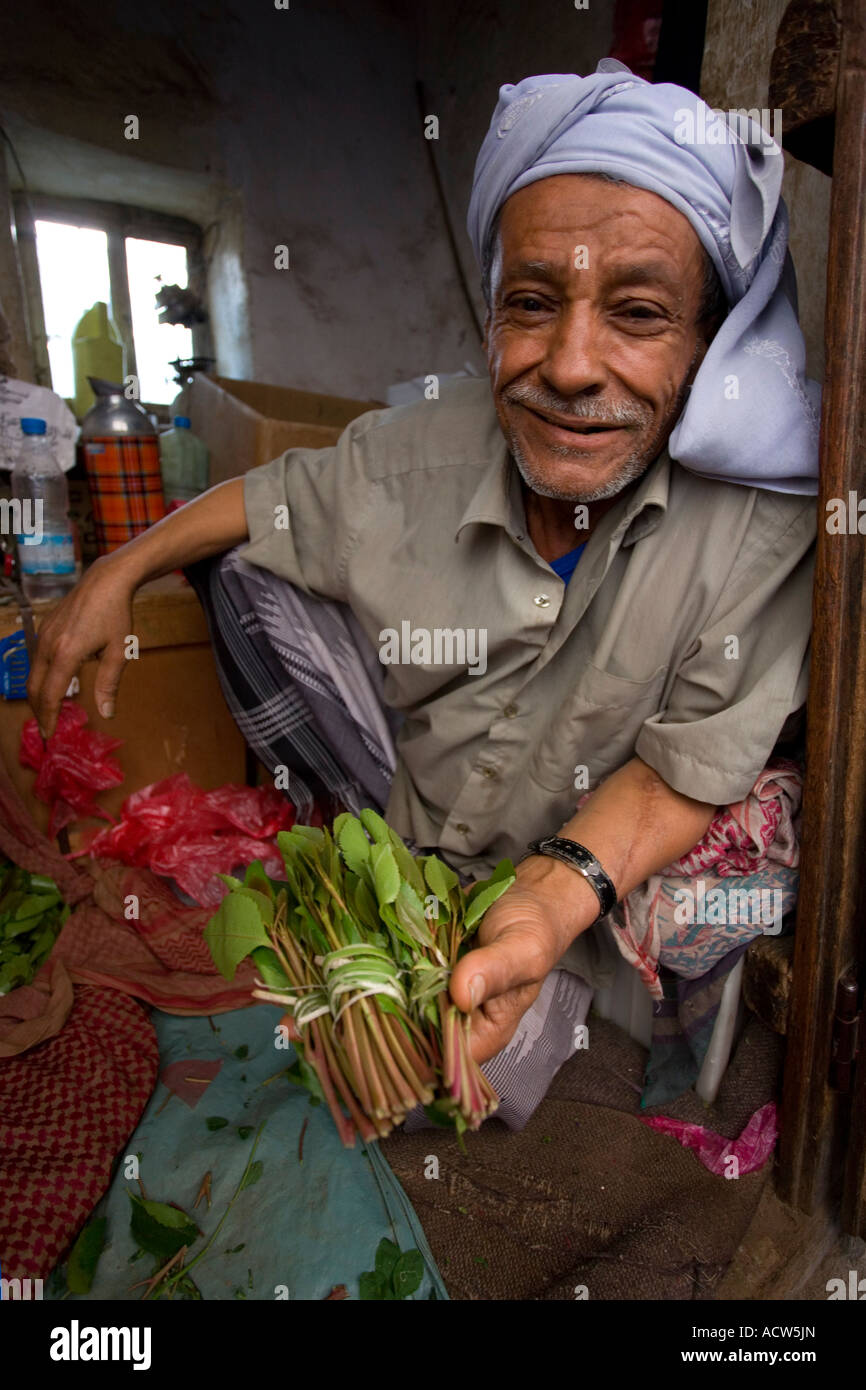 The infamous mild narcotic Qat for sale on the streets of Jibla mountain village Yemen - Stock Image