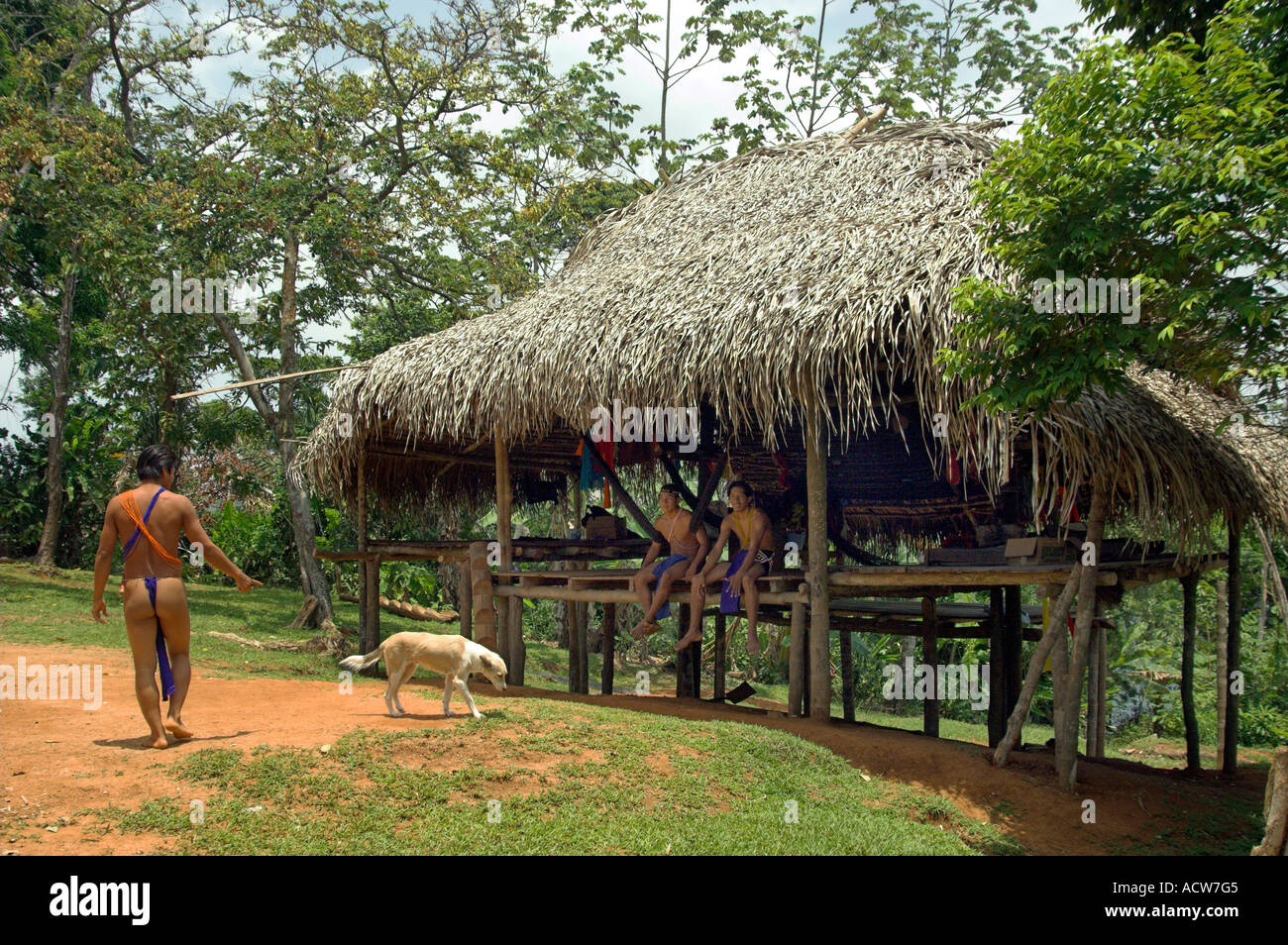 Native indian homes at the Embera Indian Village near ...