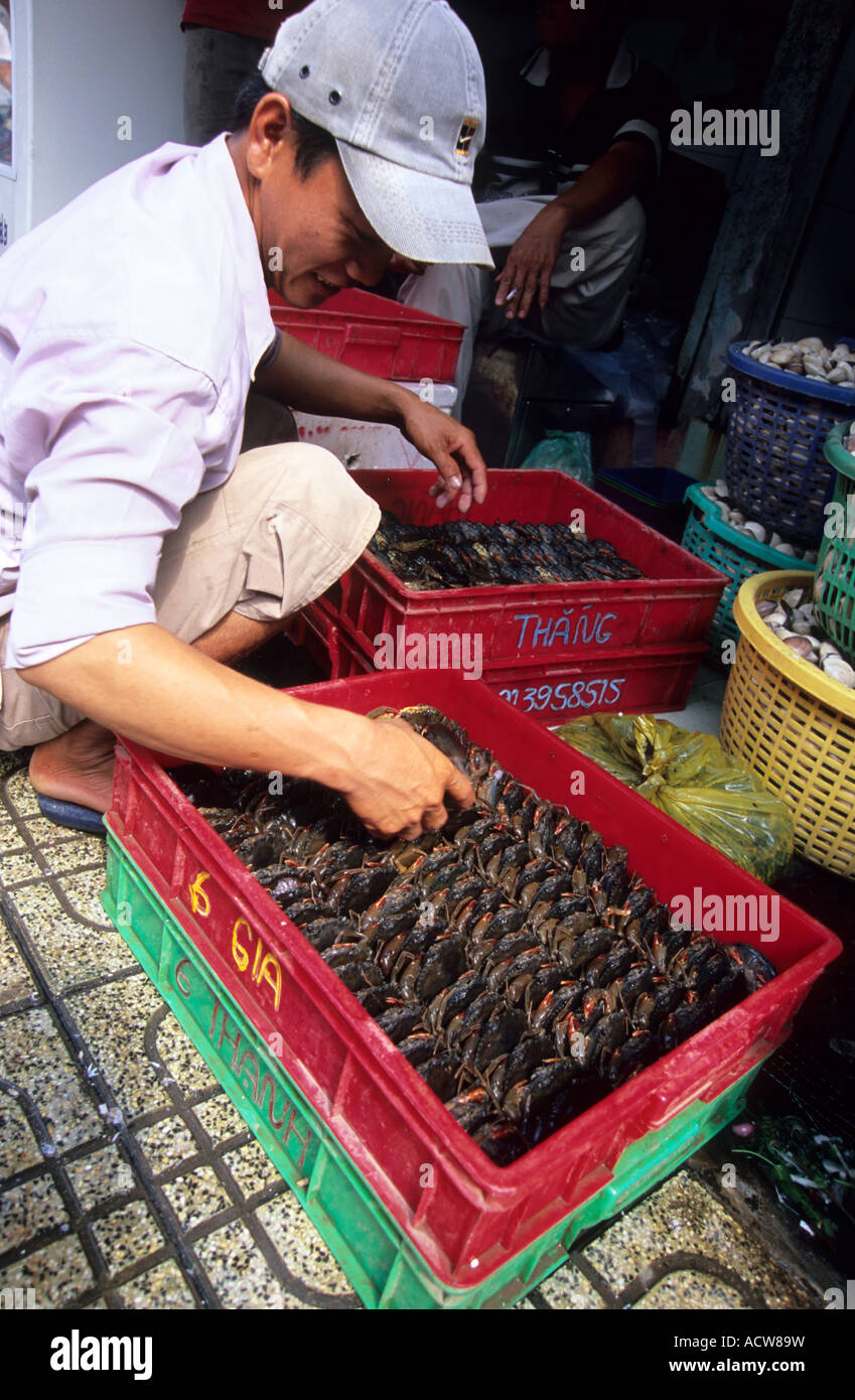 Preparing crabs for sale, Market in Ho Chi Minh City, Vietnam - Stock Image