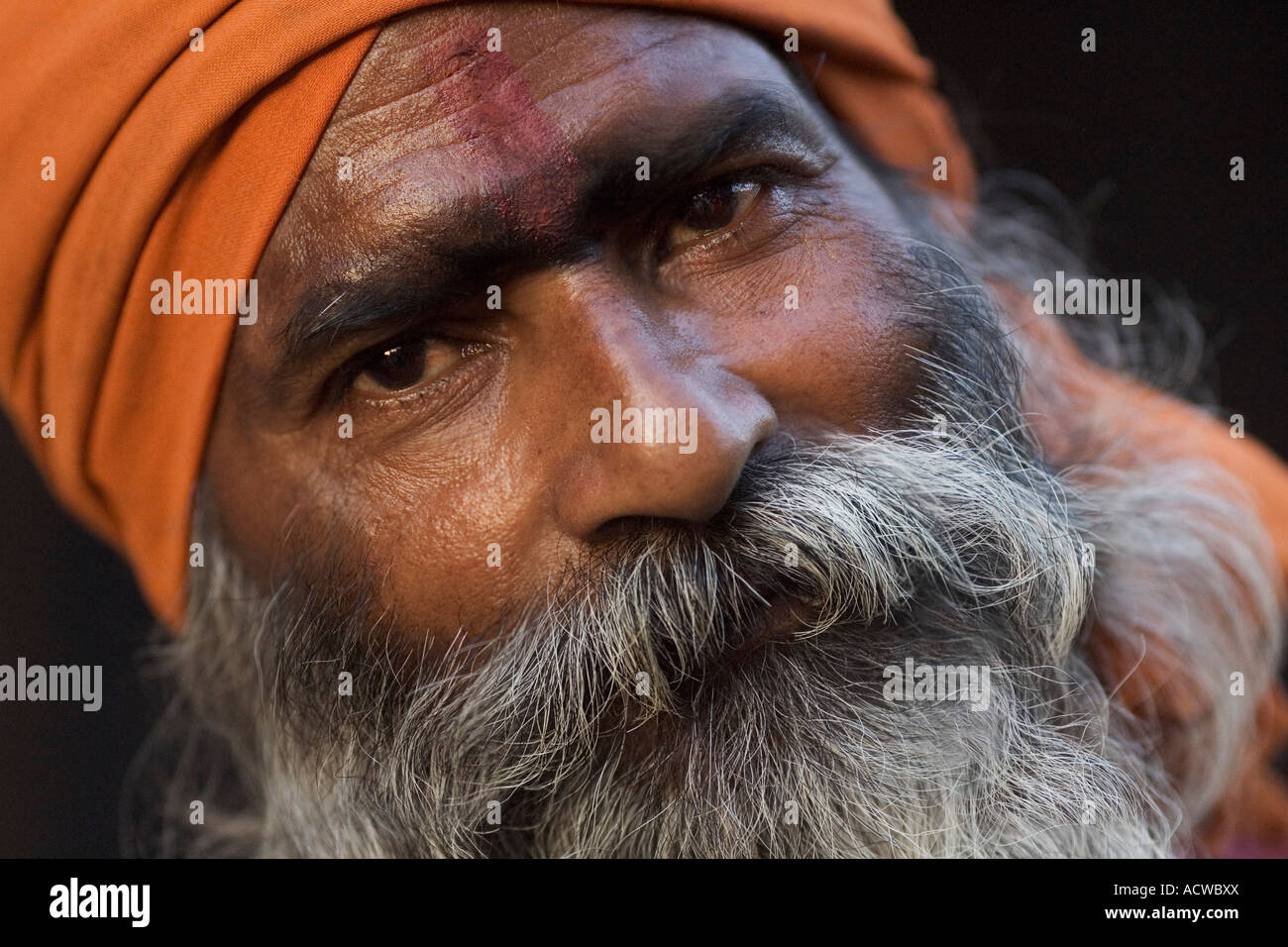 Holy bearded man Varanasi Benares India - Stock Image