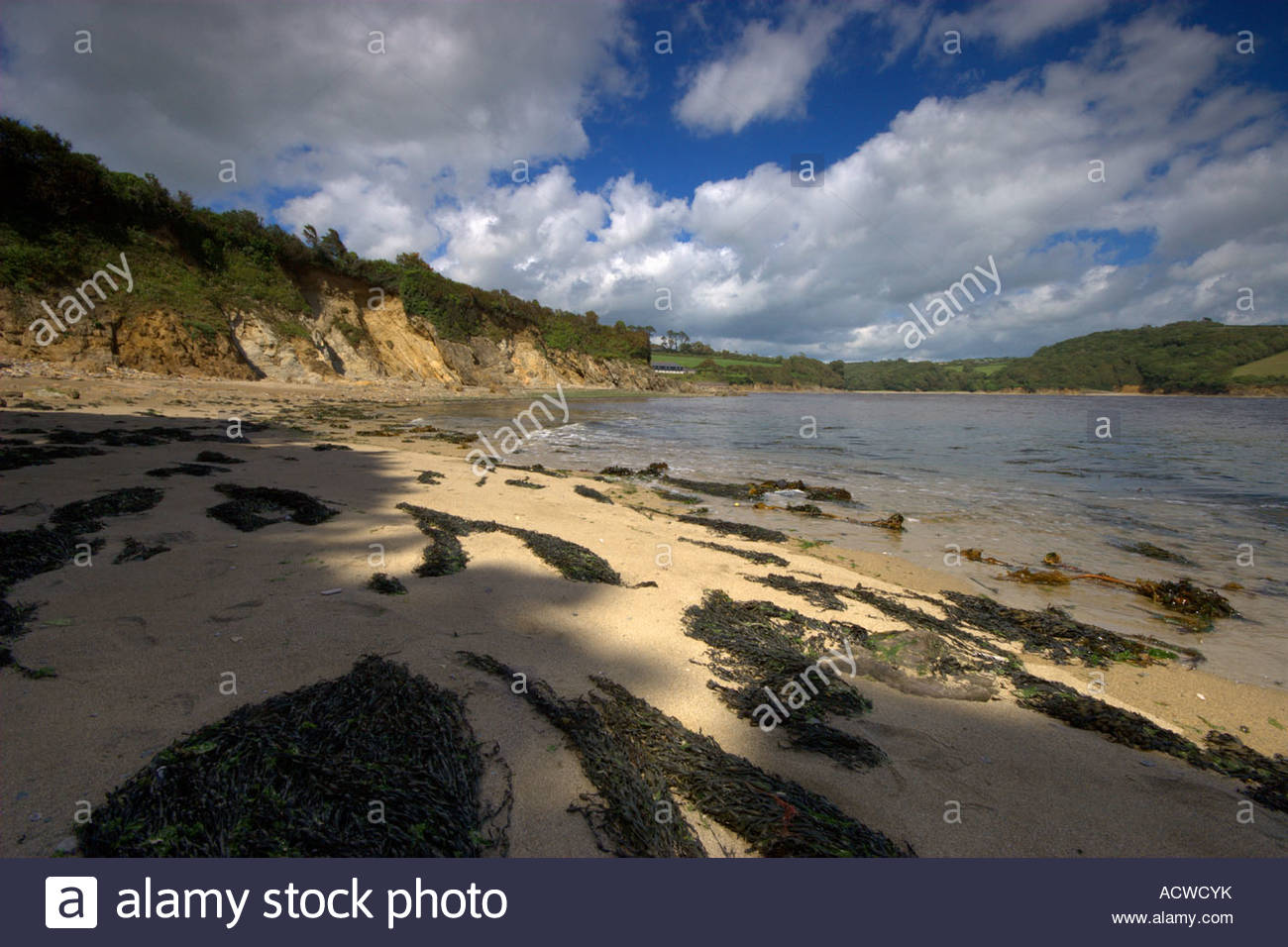 This image was taken very close to the mouth of the River Erme in the South Hams area of Devon - Stock Image