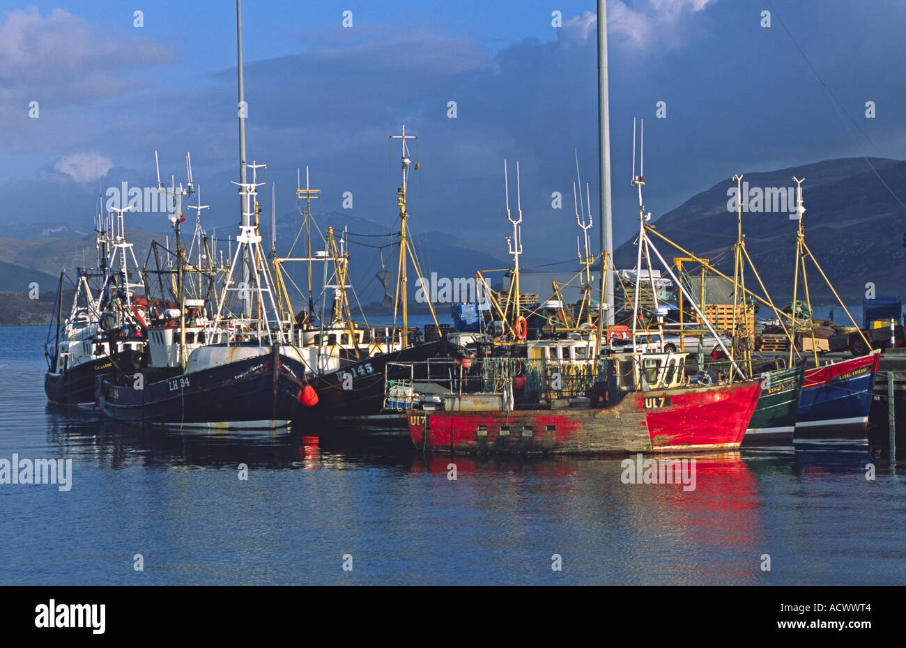 A cluster  of fishing boats at Ullapool Pier West Highlands Scotland - Stock Image