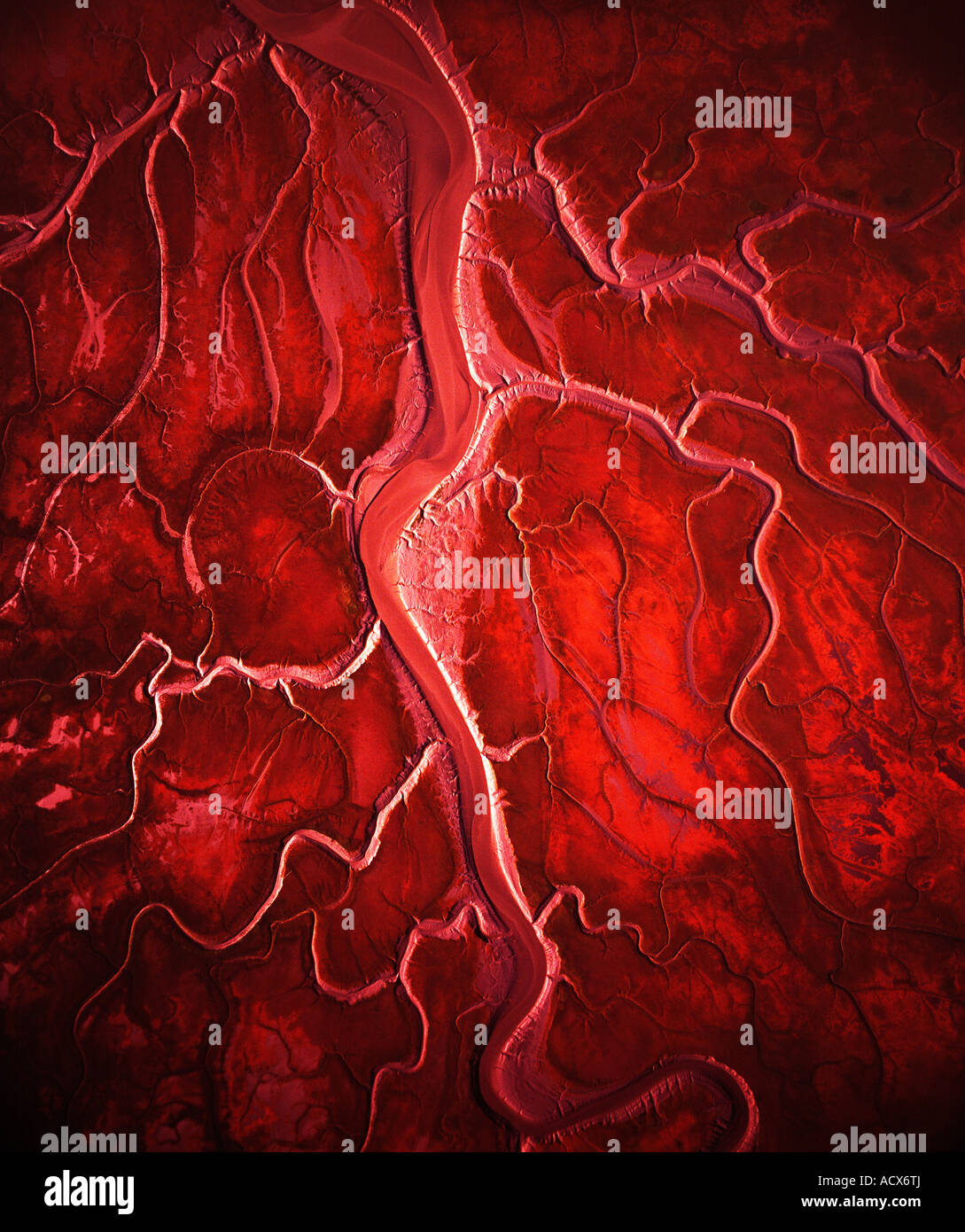 Like the arteries of the heart, the rivulets of this mudflat in Chickaloon Bay spread out from where the river empties. - Stock Image