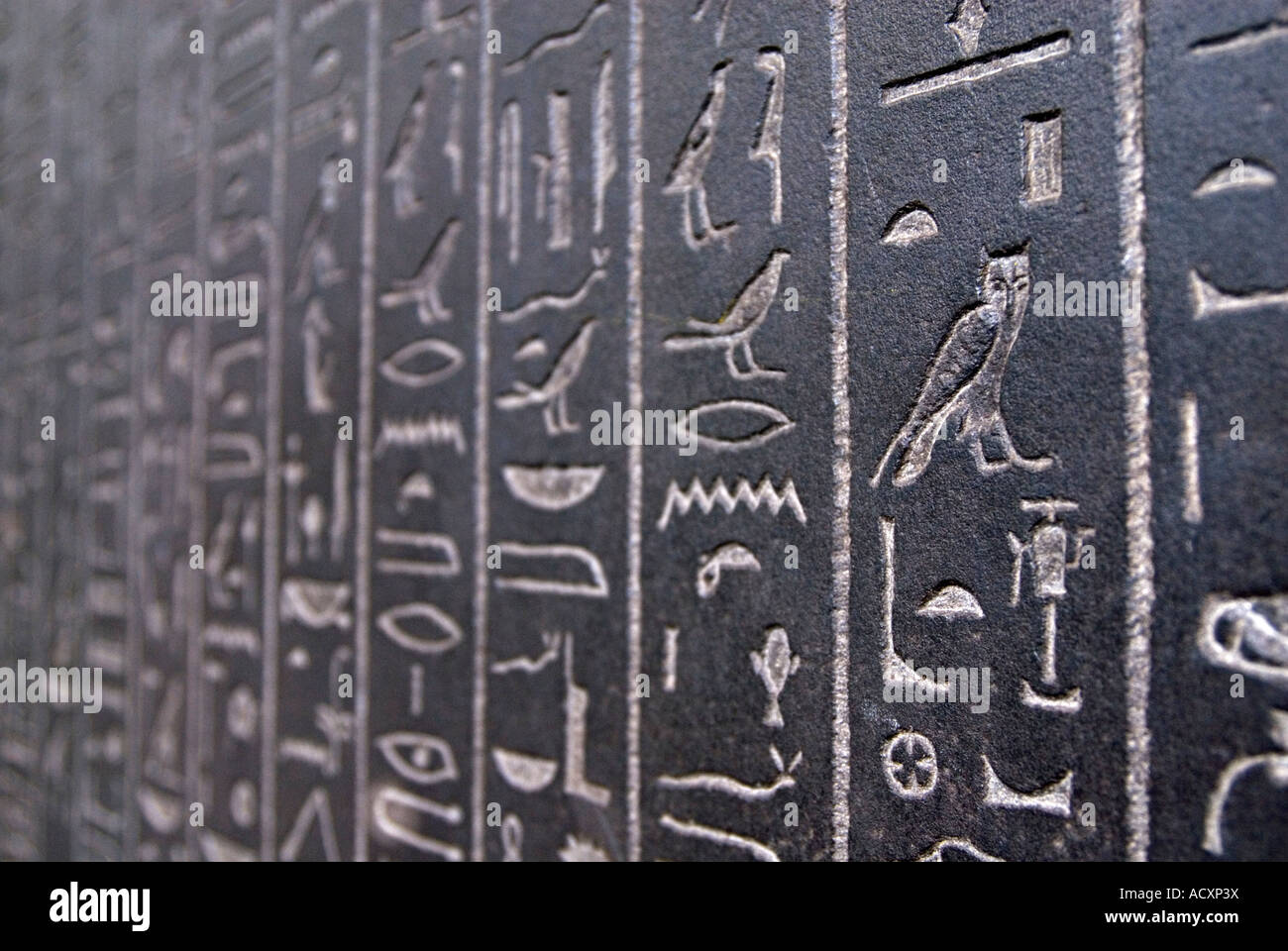 Ancient Egyptian hieroglyphs on sarcophagus in the British Museum London England UK - Stock Image
