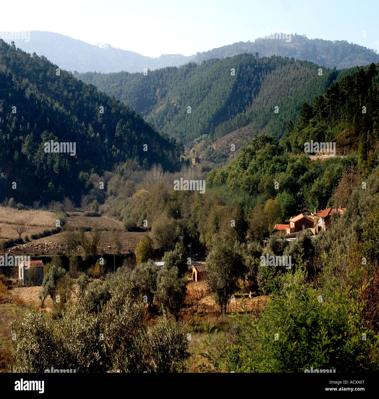 Valley near town of Alvoco das Varzeas small town in north central Portugal - Stock Image