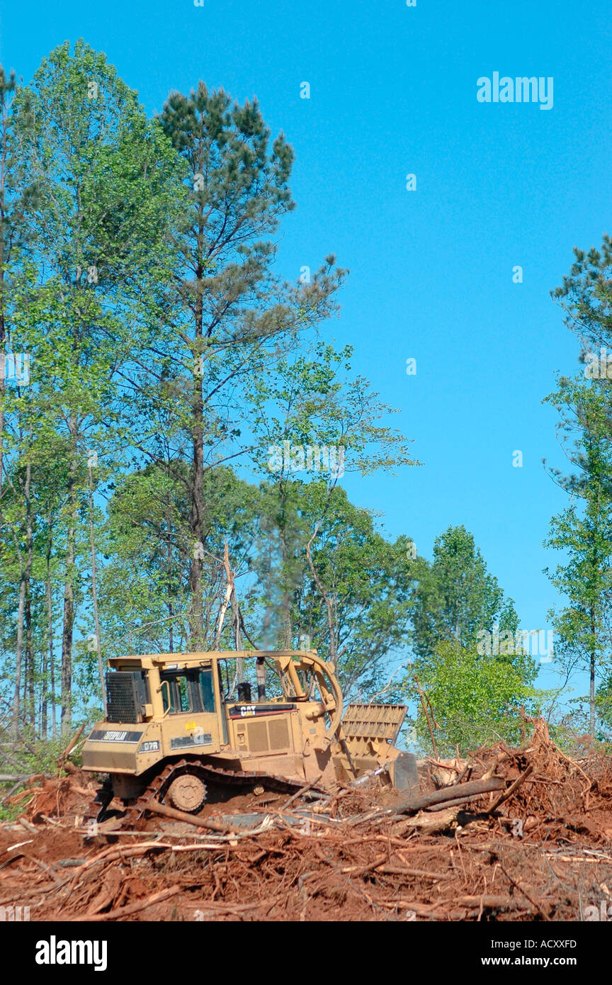 Stripping cutting trees for new subdivision of homes in forest of GA  chipping some pulp wood and plywood for other trees