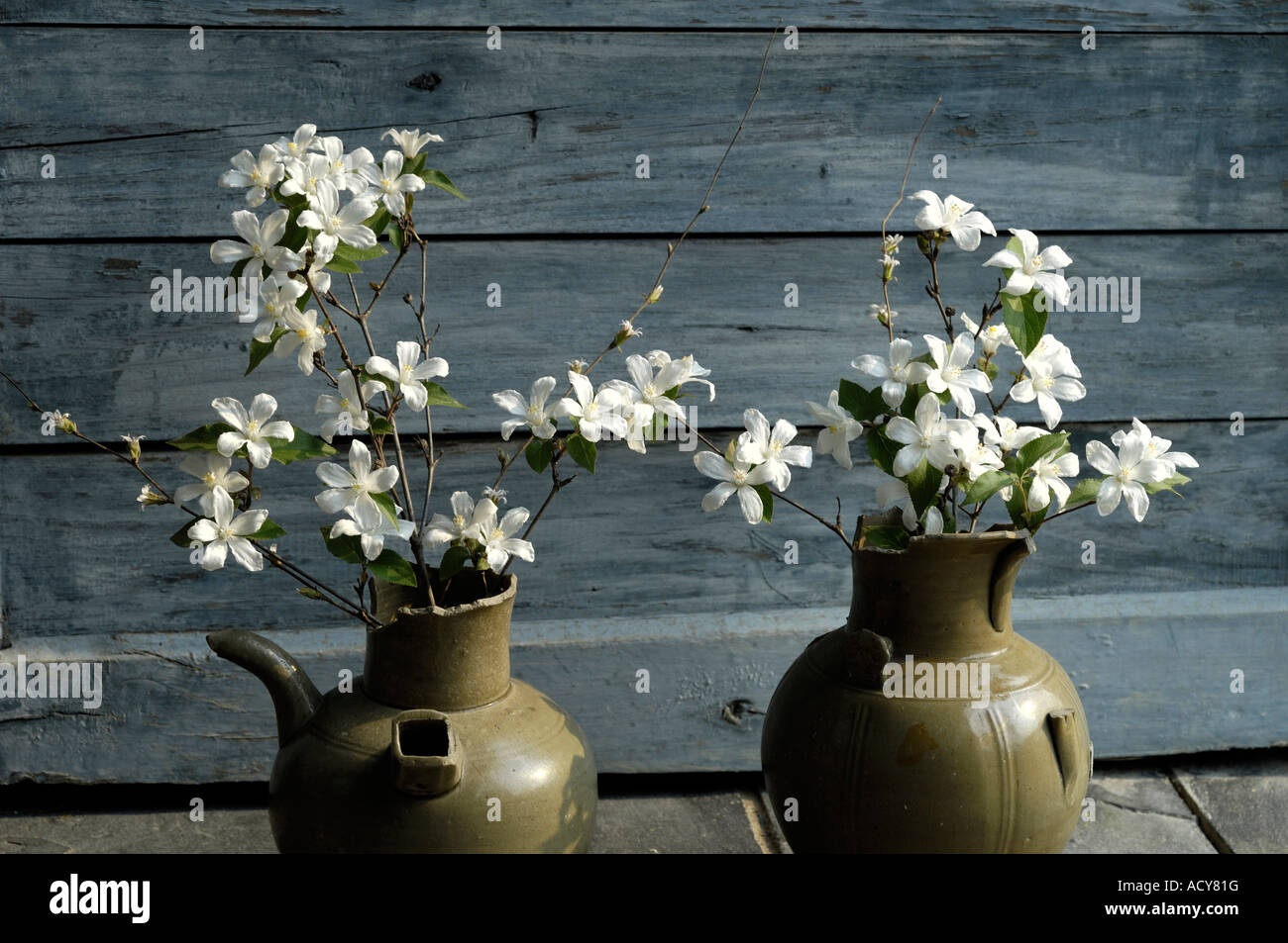 flower arrangement in two Chinese ancient pots - Stock Image