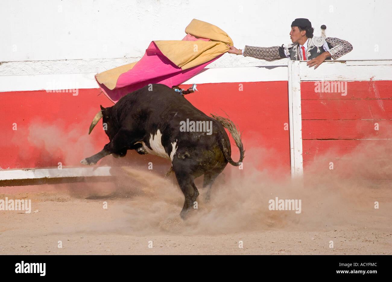 42f39f070f3 A MATADOR fights a bull in the Plaza de Toros SAN MIGUEL DE ALLENDE MEXICO -